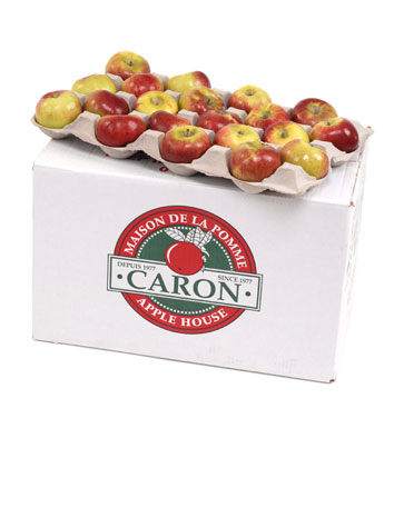 Whole apples ( Tray pack )