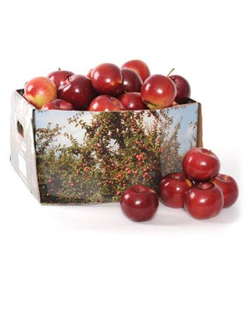 Pommes entières - ½ minot ( 18 lb )