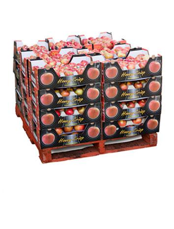 Pommes entières: cellules ( Présentoirs )